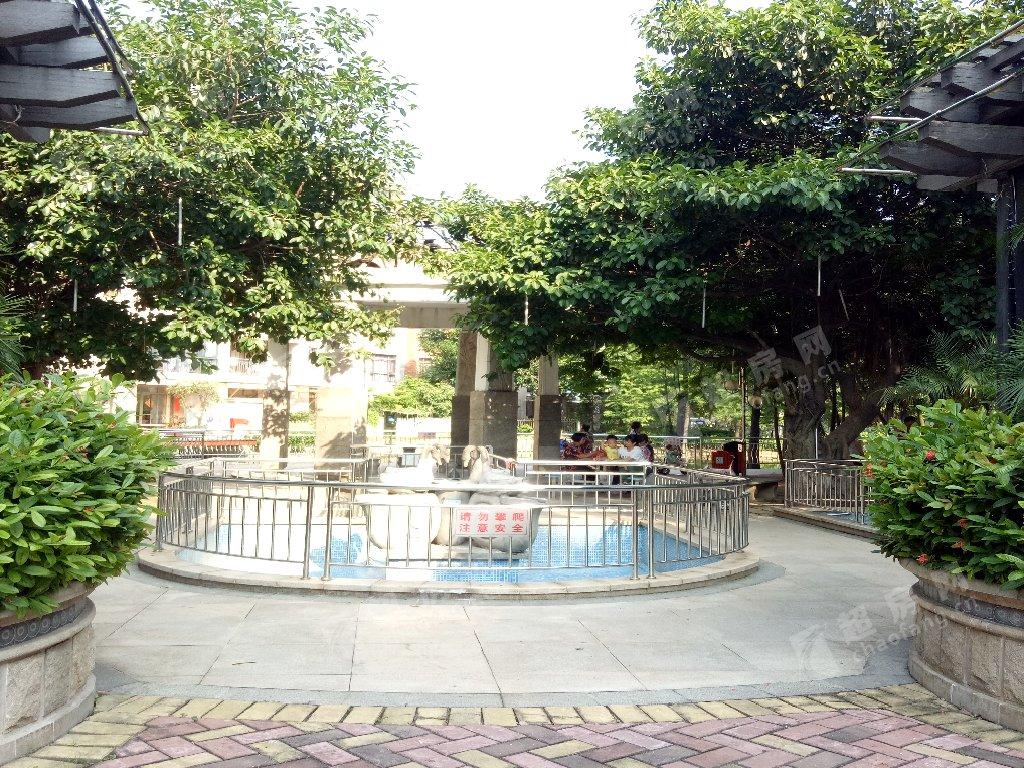 半島碧桂園實景圖